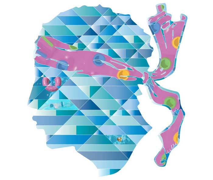 Dino Chelli - Illustration digitale - Illustrator + Wacom cintiq 16